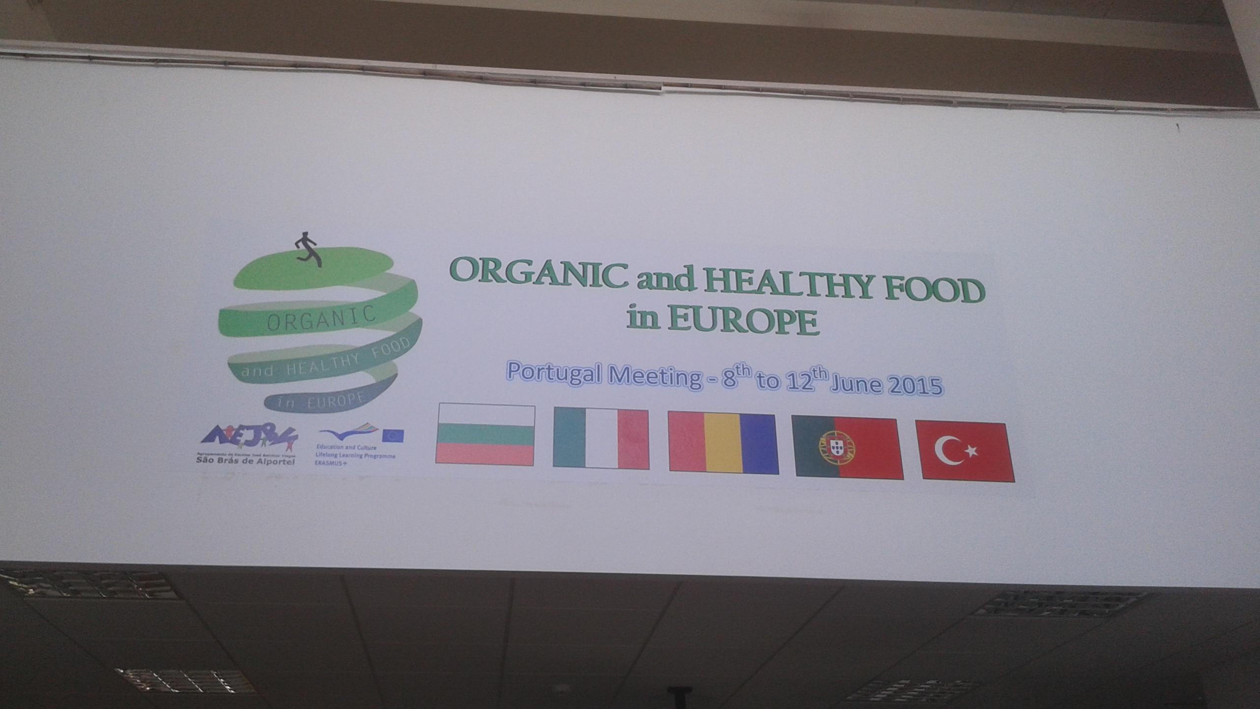 Organic PT 1